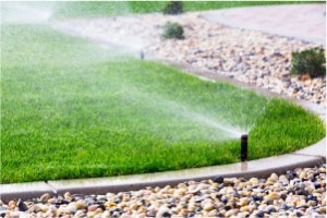 Residential Irrigation Services